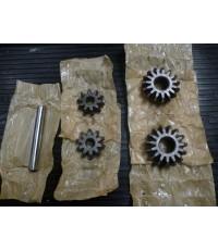 Differential Pinion - 9968597